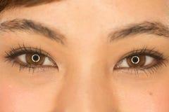 Ögon för kvinna för asiatLatina flicka arkivbild