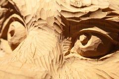 Ögon för löst djur sned i trä som åt sidan ser närbild royaltyfria bilder