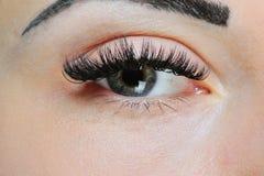 Ögon och ögonfrans för kvinna` s Makeupnärbild royaltyfri fotografi