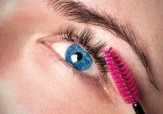 Ögon och ögonfransflickor Arkivbild