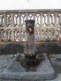 Ögon på springbrunnen fotografering för bildbyråer