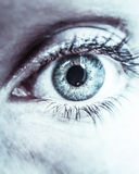 Ögon som en spegel Arkivbild