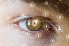 Ögon som ser systemsäkerheten arkivfoto