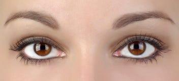 ögon två Arkivbild