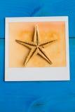 Ögonblickliga ramar av sjöstjärnan Royaltyfri Foto