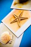 Ögonblickliga ramar av sjöstjärnan och snäckskal Fotografering för Bildbyråer
