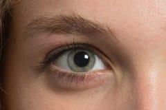 Ögonbryn för korrigering arkivbild