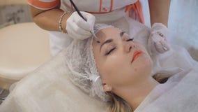 Ögonbryn som tonar behandling med naturlig hennafärg av kosmetologen stock video