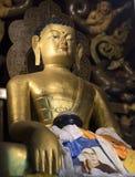Ögonen av Buddha är ganska och fridsamt royaltyfri foto