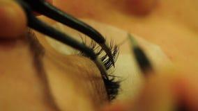 Ögonfrans i skönhetstudio stock video