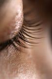 ögonfranser Arkivfoto