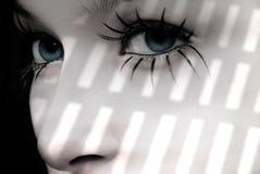 ögonfranser royaltyfri foto