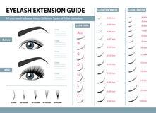 Ögonfransförlängningshandbok Olika typer av falska ögonfrans Infographic vektorillustration Mall för makeup stock illustrationer