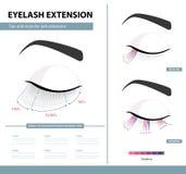Ögonfransförlängningshandbok Täthet av ögonfransförlängningen för stor blick Spetsar och trick Infographic vektorillustration mal stock illustrationer