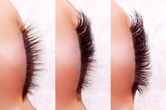 Ögonfransförlängningstillvägagångssätt Jämförelsen av kvinnlign synar före och efter arkivfoton