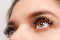 Ögonfransförlängningstillvägagångssätt Kvinnan synar med långa ögonfranser Nära övre, selektivt fokuserar arkivfoto
