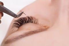 Ögonfransförlängningstillvägagångssätt Kvinnan synar med långa ögonfranser Snärtar slut upp, makro, selektiv fokus royaltyfria foton