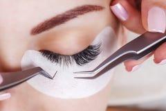 Ögonfransförlängningstillvägagångssätt Kvinnan synar med långa ögonfranser Snärtar slut upp, makro, selektiv fokus royaltyfri foto