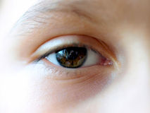 ögonhöger sida Royaltyfria Foton