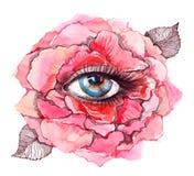 ögoninsidan steg Royaltyfria Bilder