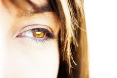 ögonkvinna Royaltyfria Bilder