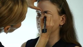 Ögonmakeupkvinna som applicerar ögonskuggapulver Stylisten gör sminket för kvinnlig vid eyeliner stock video