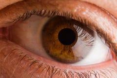 ögonmakro Arkivfoto