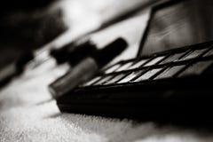 Ögonskugga - smink (svart & vit) Royaltyfria Foton