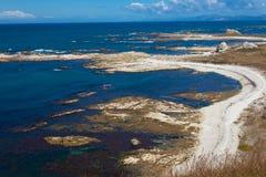 ökaikoura nära den södra steniga kusten för nz Fotografering för Bildbyråer