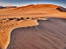 Öken av namib med orange dyn Royaltyfri Fotografi