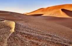 Öken av namib med orange dyn Arkivfoto