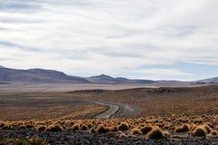 Öken i Bolivia Arkivbild