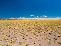 Öken i det near av San Pedro de Atacam Royaltyfri Bild