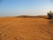 Öken i Dubai Fotografering för Bildbyråer
