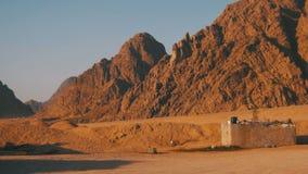 Öken i Egypten, sand och berg, panoramautsikt lager videofilmer