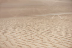 Öken i Huacachina, Peru Closeupdyn arkivbilder