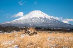 Öken med Fuji royaltyfri foto