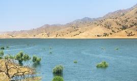 Öken med sötvattensjön Fotografering för Bildbyråer