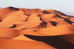 öken morocco sahara Arkivfoto