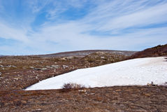 öken norr norway Arkivbilder