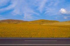 Öken och huvudväg med en blå himmel royaltyfri foto