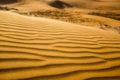 Öken- och sanddyn Dubai Fotografering för Bildbyråer