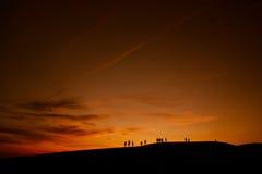 Öken och solnedgång Arkivbilder