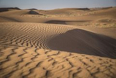 Öken Safari Dubai Royaltyfria Foton