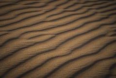 Öken Safari Dubai Royaltyfri Foto