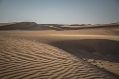 Öken Safari Dubai Arkivfoto