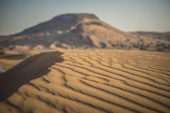 Öken Safari Dubai Fotografering för Bildbyråer