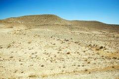 Öken Sahara i Tunisien Arkivbilder