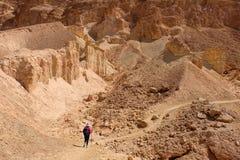 Öken som fotvandrar i Negev berg arkivfoto
