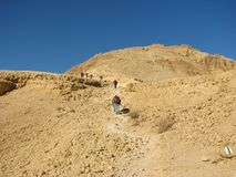öken som fotvandrar judean wadizeelim arkivbild